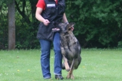 Briga Schutzhund 3 April 2009 Bild Nr. 1
