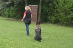 Briga Schutzhund 3 April 2009 Bild Nr. 3