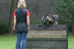 Briga Schutzhund 3 April 2009 Bild Nr. 6