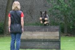 Briga Schutzhund 3 April 2009 Bild Nr. 7