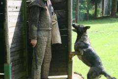 Briga Schutzhund 3 April 2009 Bild Nr. 14