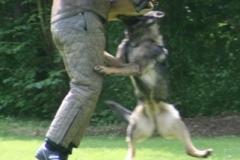 Briga Schutzhund 3 April 2009 Bild Nr. 23