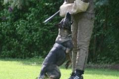 Briga Schutzhund 3 April 2009 Bild Nr. 24