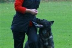 Briga Schutzhund 3 Oktober 2008 Bild Nr. 12