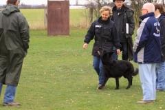 Inka Schutzhund 1 Dezember 2009 Bild Nr. 3