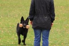 Inka Schutzhund 1 Dezember 2009 Bild Nr. 5